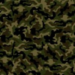 Camouflage Survey – Is the Camo Trend Starting or Ending?